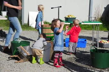 Group of children making apple juice. Small girl in foreground drinking.